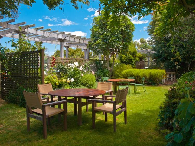 refaire gazon pelouse jardin