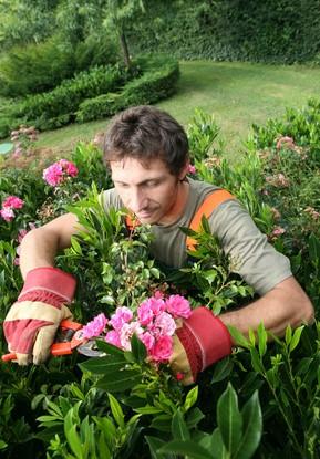 entretien jardin droits obligations