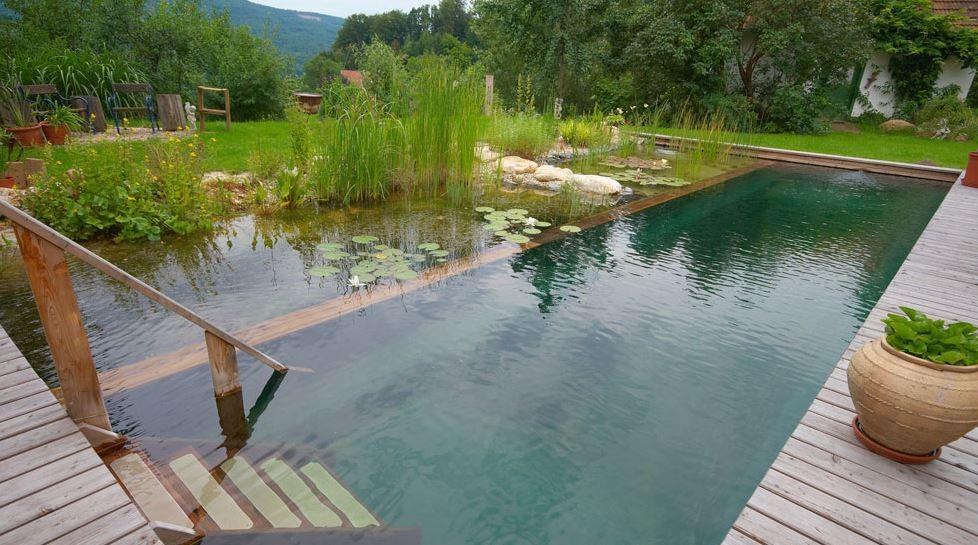 Ordinaire Piscine Naturelle