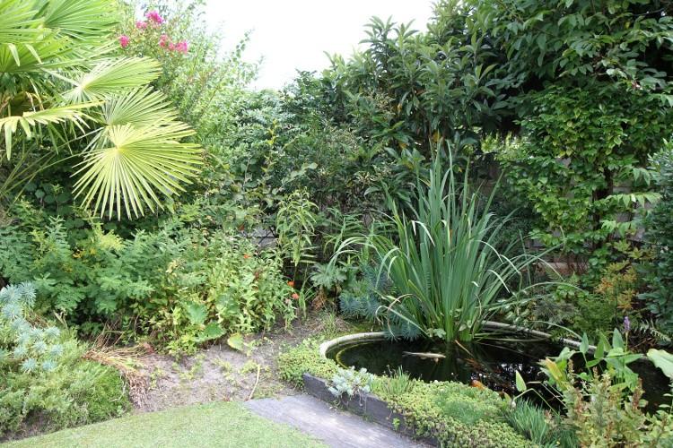 Tous les types de bassin de jardin tableau habitatpresto for Amenagement bassin exterieur
