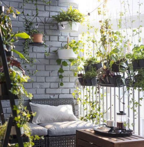 Balcon avec des plantes