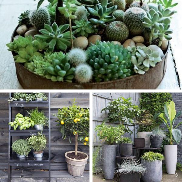Comment construire un jardin d\'hiver ? Nos conseils d\'expert