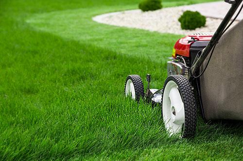Entretien du jardin : combien va-t-il vous coûter ?