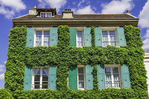 facade_maison_vegetale
