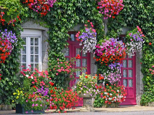 facade_maison_vegetale1