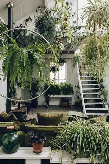 Jardin d'hiver appartement