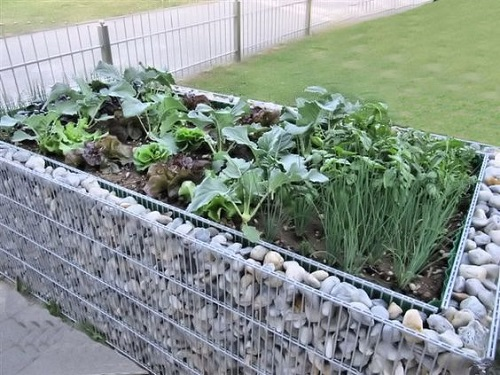 Jardinière en gabion