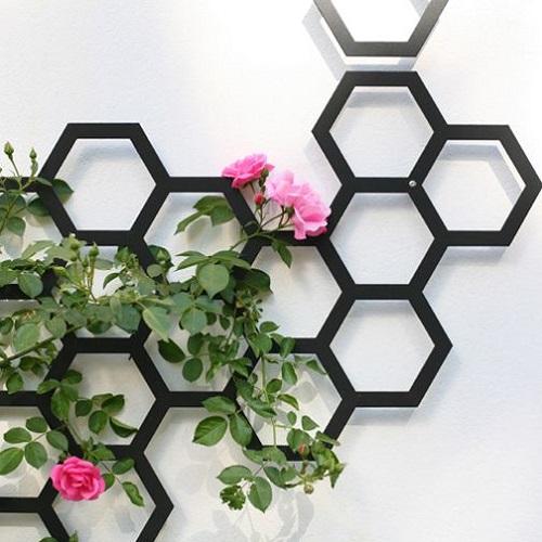 Jardinière murale en hexagone