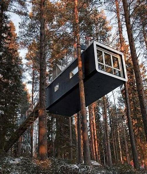 maison_container_arbre