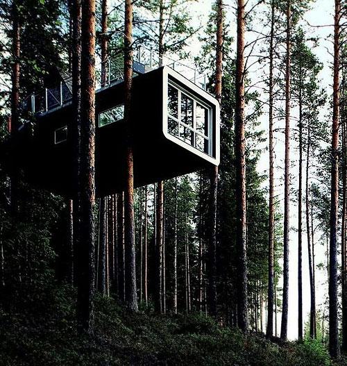 maison_container_arbre2