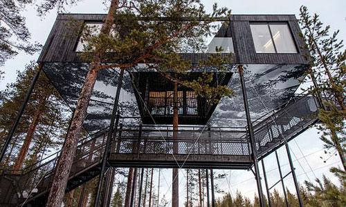 maison_container_arbre3