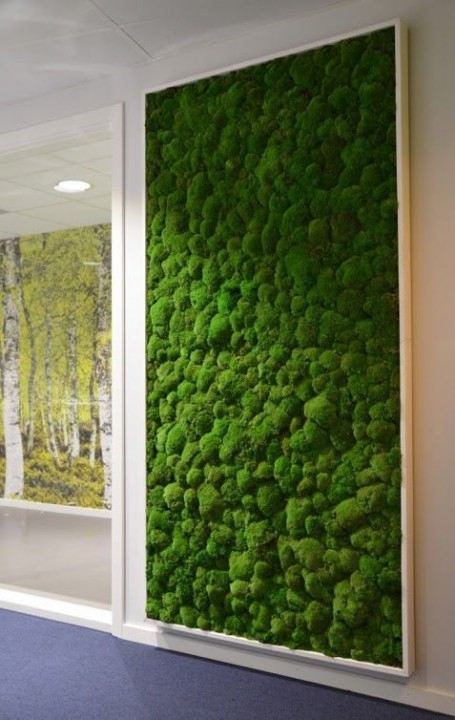 un mur végétal en mousse pour la déco intérieure | habitatpresto
