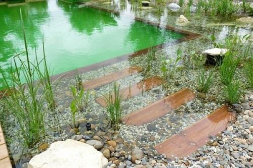 piscine naturelle prix avantages d 39 une piscine sans chlore. Black Bedroom Furniture Sets. Home Design Ideas