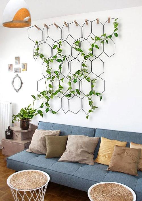 plantes_graimp