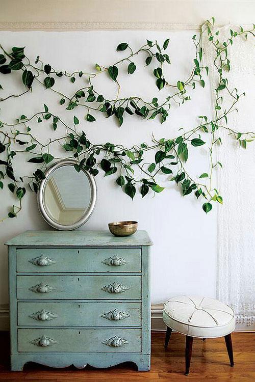plantes_graimp1