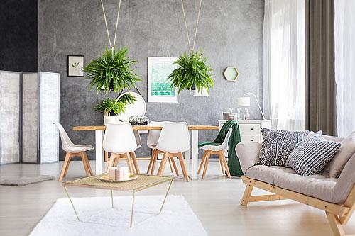 plantes_susp