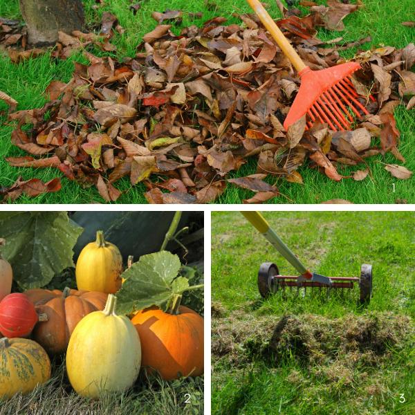 Comment Préparer Et Entretenir Son Jardin En Hiver
