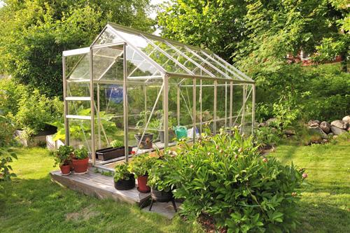 Serre de jardin : quel aménagement pour vos plantations ?