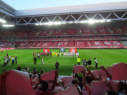 stade_pierre1