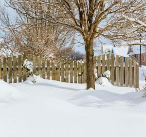 Entretien du jardin pr parer l 39 hiver habitatpresto for Entretien gazon printemps