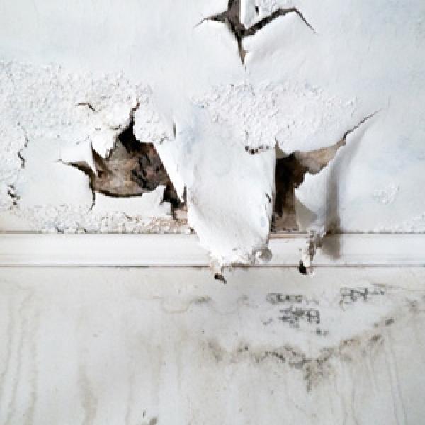 Dégâts Des Eaux Plafond Que Faire Pour Bien Réagir