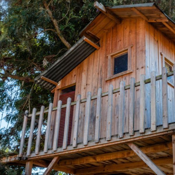 construire une cabane dans un arbre le guide. Black Bedroom Furniture Sets. Home Design Ideas